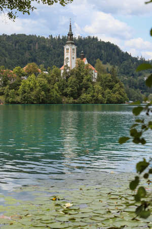 Lake Bled Slovenia and water lilies. Beautiful mountain lakewith small Church on island with castle on cliff and european alps in the background.