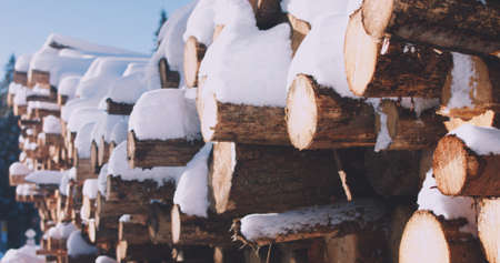 A woodpile of chopped lumber in the forest covered with snow in winter. Reklamní fotografie - 137599364