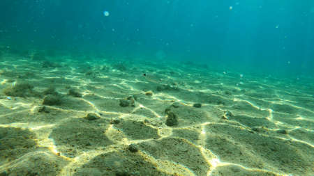 Photo of underwater rocks, sand and stones. The beautiful sandy and rocky bottom of the sea. Reklamní fotografie