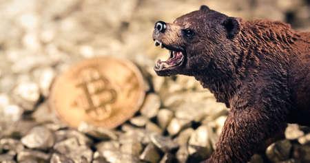 Bearish bitcoin price drop concept. Bear market and loosing value on digital gold Reklamní fotografie