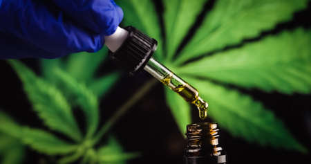 Scientist with gloves researching and examining CBD hemp oil in pipette. Concept of herbal alternative medicine, pharmaceutical industry