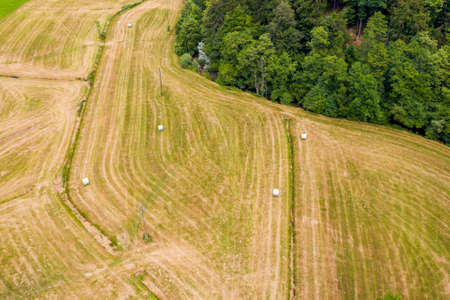 Farmer harvesting hay on the grass field with green forest around, aerial view Stok Fotoğraf