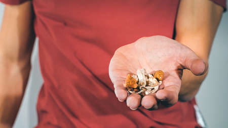 Magic Mushrooms for microdosing being held in man hands. Psilocybin psychedelic therapy.