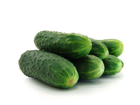 fresh green cucumbers on a white background                    Stock Photo