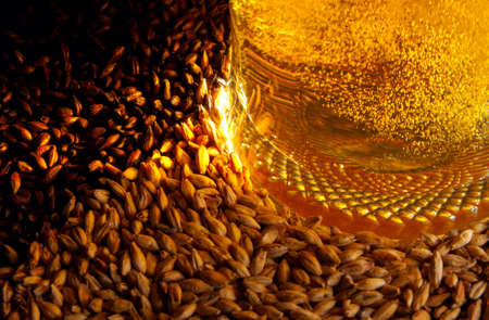 Pale malt, crystal malt, chocolate malt and beer Stock Photo