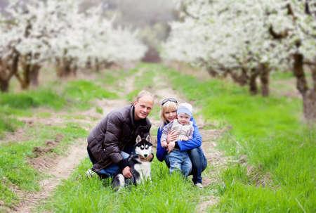 Family with husky in blossom garden Stockfoto