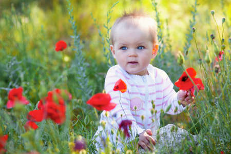 Child boy on the summer meadow photo