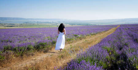 girl walking on the road to the field of lavender photo