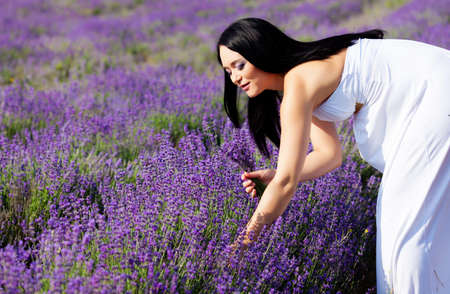 long-haired pretty pregnant woman collects lavender photo