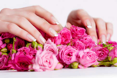 Beautiful woman hands on the rose flowers