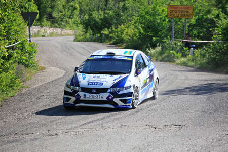 irc: FOROS, UKRAINE - JUNE 4: Janos Puskadi driving his car at IRC Prime Yalta-Rally 2011, Foros, Ukraine, 4 june 2011 Editorial