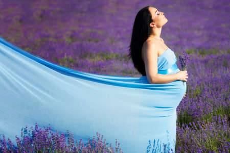 Giovane donna incinta sul campo di lavanda photo