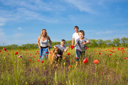 poppy field: Gezin van vier personen en hond spelen op het veld papaver