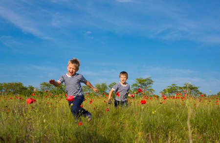 Two boys playing on the poppy field photo