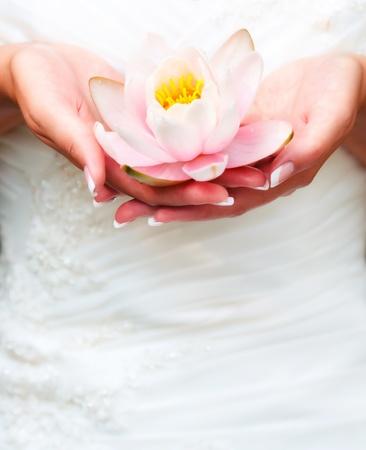 女性の手の中の水ユリの花 写真素材