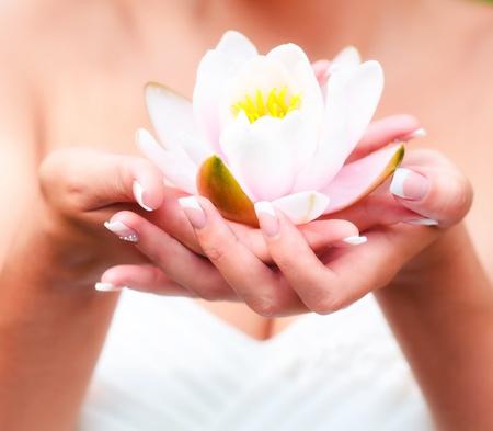 여자 손에 물 백합 꽃