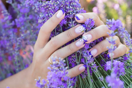 Lavender in the hands with a nice manicure Banco de Imagens