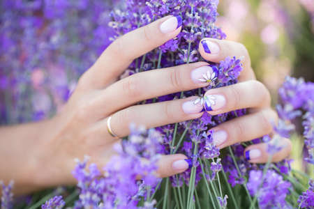 Lavender in the hands with a nice manicure
