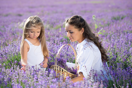 Beautiful happy couple mother and her  cute daughter  in lavender field Stockfoto