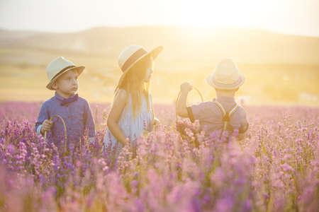 Three happy children in lavender field