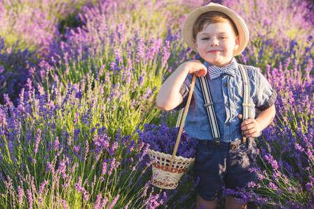 Happy boy in lavender field Stockfoto