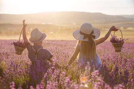 Brother and sister in lavender field Imagens