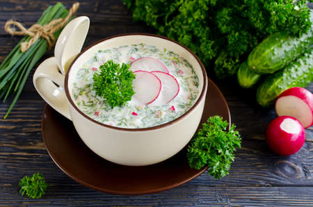 Russian springsummer cold soup with vegetables with kefir