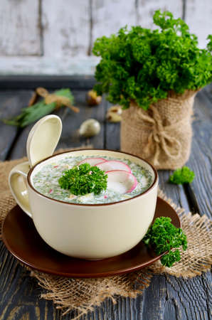 cold soup: Russian springsummer cold soup with vegetables with kefir