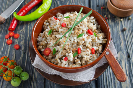 Rice with minced meat, spices and spring onions