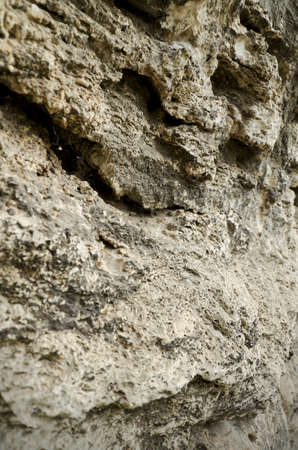crack climb: Limestone is a sedimentary rock of organic origin. A limestone composed predominantly of shells of marine animals and their fragments Stock Photo