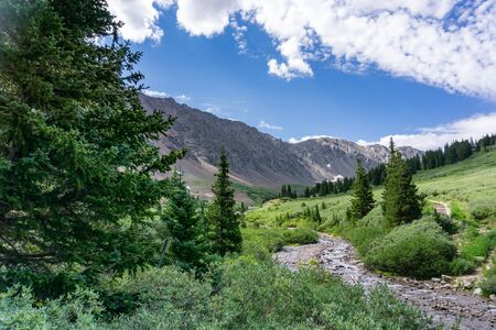 Beautiful alpine scene with evergreen trees trailhead Gray's Peak Banco de Imagens