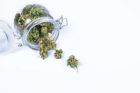 Fresh green buds or flowers of cannabis marijuana weed in opened glass jar isolated on white background. Alternative treatment. Medical cannabis. Copy space. Banco de Imagens
