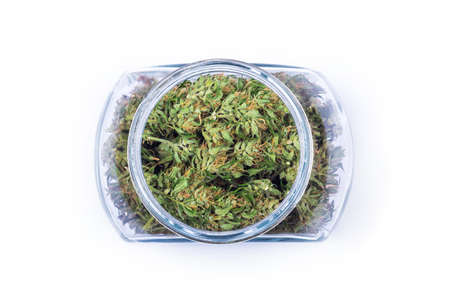 Top view of fresh green buds or flowers of cannabis marijuana in a glass jar isolated on white background. Alternative treatment. Medical cannabis. Copy space. High angel view.
