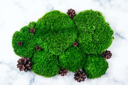 Top view of natural dark green moss decorated with pinecones over white marble background. Zero waste and eco-conscious concept layout.