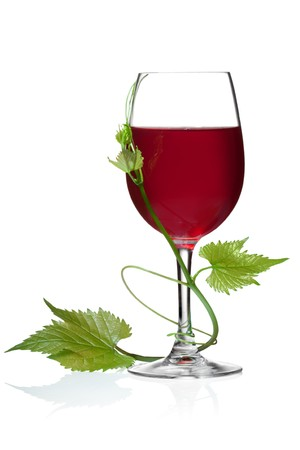 syrah: Glass of red wine and grape leaves on a white background and with soft shadow.