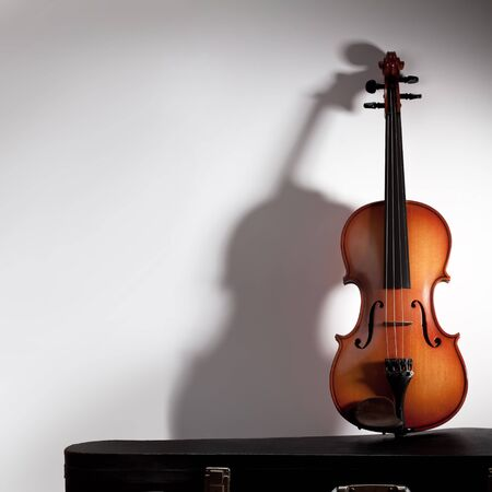 violas: Violin with soft shadow and copy space Stock Photo