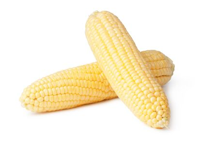 solated: fresh corn vegetable solated on white background