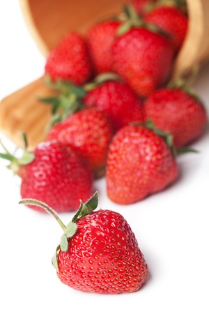 strawberries in basket hanging on a white background photo