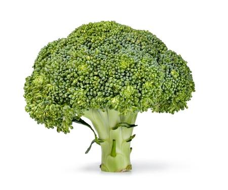 broccolli: broccoli isolated on white Stock Photo