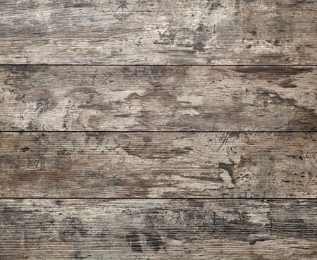 wood log: wood background, wooden