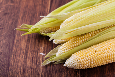 maize cultivation: corn isolated on a wooden Stock Photo