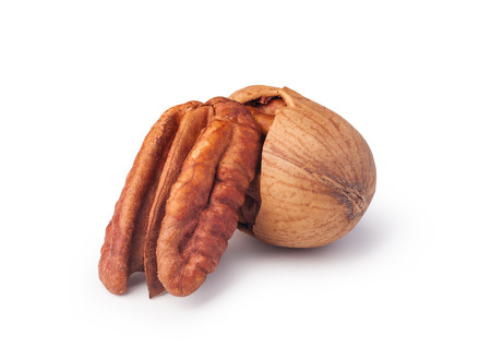 pecans: Pecan nuts on a white background