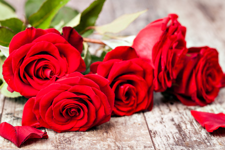 bunch of red roses: Red rose on a wooden table Stock Photo