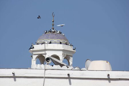 Close-up of a minaret in Muscat, full of birds on its roof, facing the sky photo
