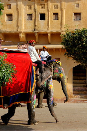 amber fort: JAIPUR, INDIA: Elephant decorated with traditional painted patterns in the Amber Fort in Jaipur, with drivers on it