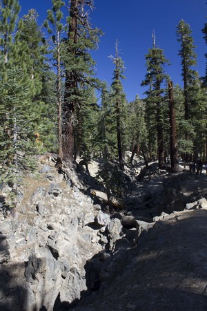 mammoth lakes: MAMMOTH LAKES, USA - AUG 9 2013: Beautiful natural scenery around Mammoth Lakes in California, with trees and a blu sly. Stock Photo