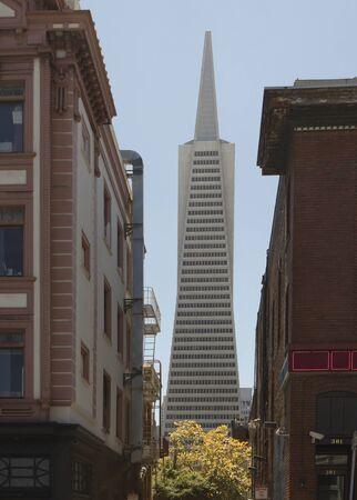 transamerica: SAN FRANCISCO, USA - AUG 12 2013: Architectural detail of The Transamerica Pyramid, the tallest skyscraper in the San Francisco skyline
