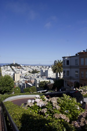switchback: SAN FRANCISCO, USA - AUG 11 2013: The famous Lombard Street in San Francisco, famous for its steep, one-block section with eight hairpin turns, with the city skyline. Editorial