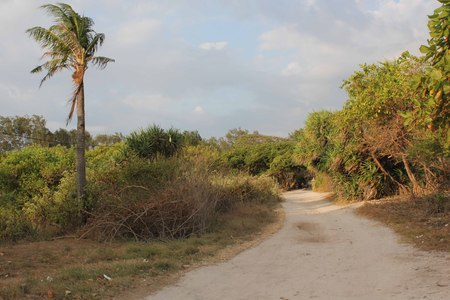 unpaved road: Unpaved road in Gili Islands, Indonesia Stock Photo