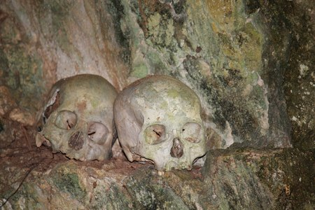 celebes: TANA TORAJA, INDONESIA - JULy 4 2012: Skulls & bones in a burial cavegrave Tana Toraja, Indonesia. Editorial